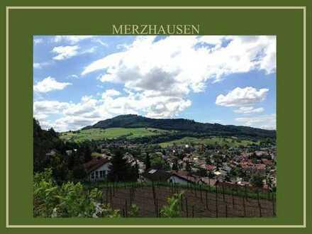 ***Leben am Lorettoberg Merzhausen**herrlicher Blick zum Schönberg & den Vogesen***
