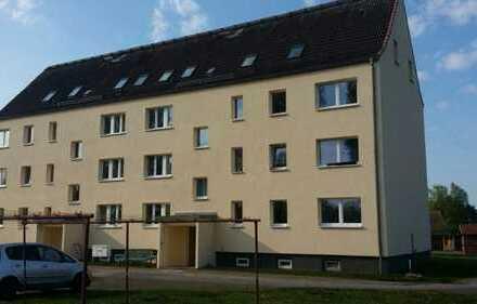3-Raum-Wohnung mit modernem Bad und Einbauküche