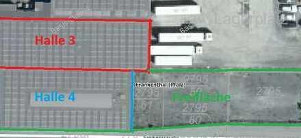 Produktions- und Lagerhalle + Freifläche auch in Einzeleinheiten zu vermieten