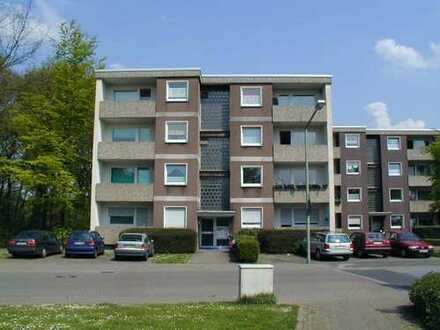 ...HELLES APARTMENT IN DISTELN...