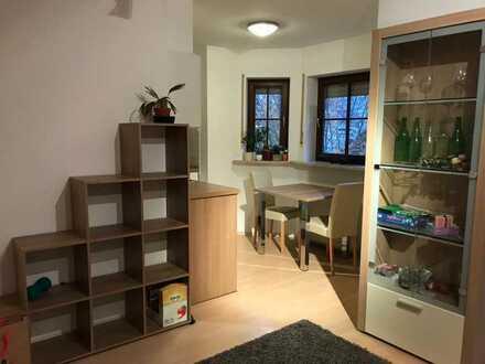 Exklusives, saniertes, möbliertes 1-Zimmer-Apartment mit Balkon und EBK mit GSP in Gerbrunn
