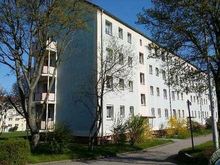 Tür auf, Möbel rein! Neu sanierte Wohnung mit sonnigem Balkon