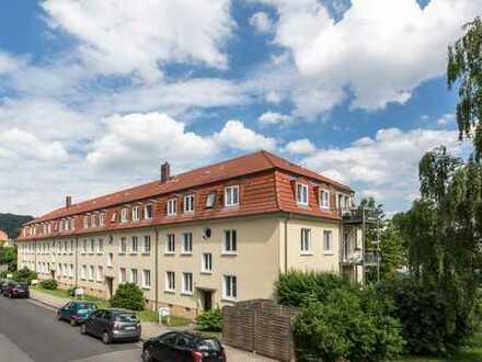 *neu sanierte 3-Zimmer-Familienwohnung mit Balkon und 2 Tageslichtbädern*