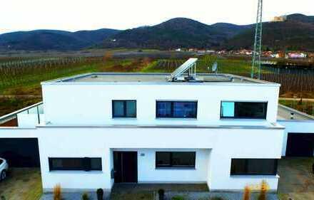 Eindrucksvolle Architektenwohnung 4,5 Zi. in wunderschöner direkter Weinberglage und Schlossblick!