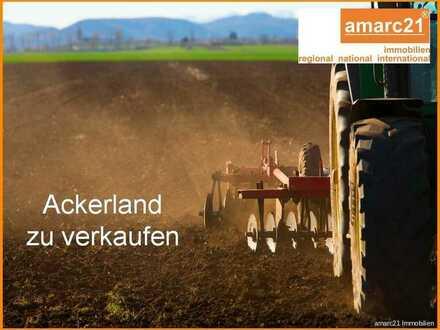 3,14 ha Ackerland