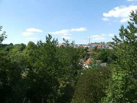 Einzigartiger Ausblick -  Großes Hanggründstück in Großglattbach