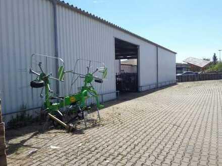 Lagerhalle und Markt auf großzügigem Grundstück