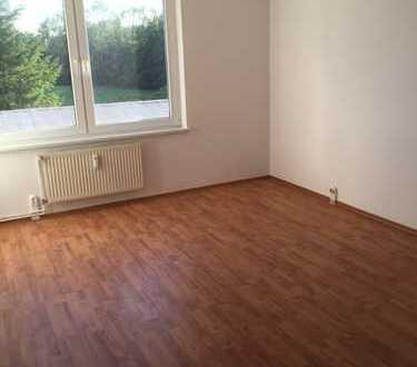 Frisch renovierte 4 Zi. Wohnung. Einbauküche, Umzugsservice-Kostenübernahme!