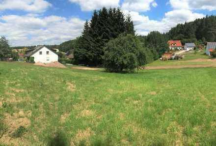 sonniges, ruhiges Baugrundstück in verkehrsgünstiger Lage Trippach/Weiherhammer nur 6 km bis Weiden