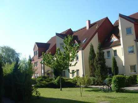 Sonnige 2 Zimmer Wohnung in Müncheberg