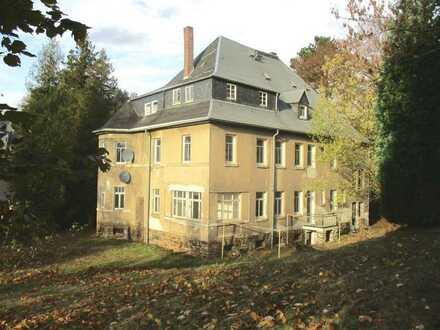 Verkauf einer großzügigen Villa im Grünen