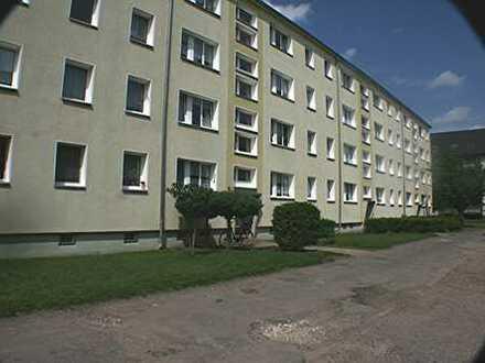 Neu renovierte, sonnige 3-Zimmer-Wohnung mit Balkon, ruhige Grünlage