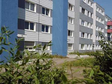 Wohnen im Germanenviertel