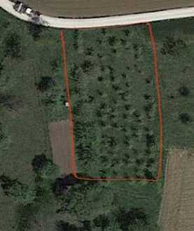 Landwirtschaftsfläche Obere Halde im Bereich Beuren Balzholz