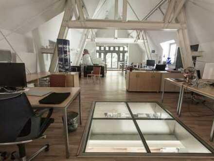 Exklusives Loft in ruhiger Lage | 497 m² | inkl. Kellerräume