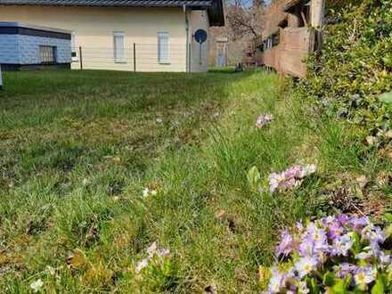 Schöne DG-Whg. mit Garten und Garage in guter Lage (keine Tiere)