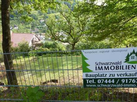 Baugrundstück in bester Südlage von 72275 Alpirsbach