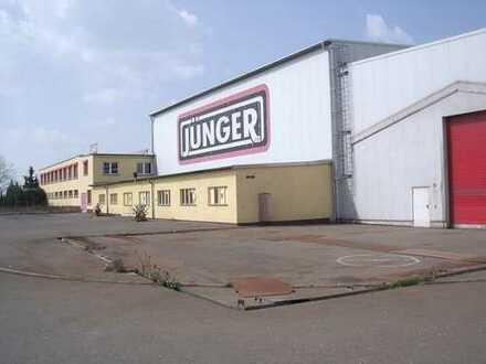 Gewerbebetrieb mit Büro und Sozialtrakt Nähe Gera direkt an der A4
