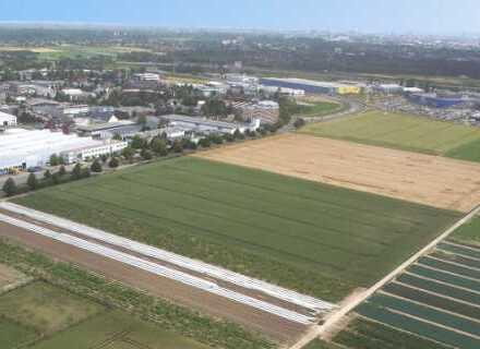 """BAUMÜLLER & CO."" - Nähe A5: ca. 15.000 m² Grundstücksfläche - zum KAUF"
