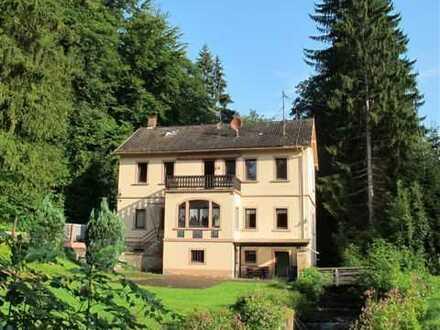 Schöne Einliegerwohnung mit EBK in Frammersbach