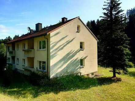 Ruhige 3-Zimmer Wohnung in herrlichen Wohnlage
