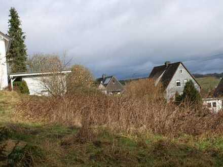 ZWEI klasse Grundstücke mit toller Fernsicht in ruhiger SW-Lage von OBERDIELFEN !!!