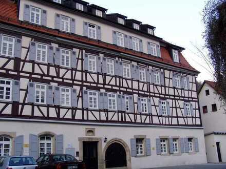 Romantische 3 Zimmer Wohnung in Reutlingen (Kreis), Bad Urach, fußläufig zum Zentrum