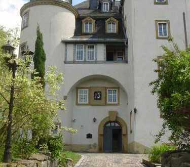 Repräsentative Wohnungen im Schloß Heinersgrün 3-Zimmerwohnung mit Gartenausgang