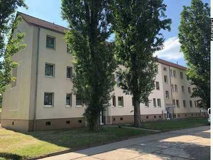 Winter-Aktion! 4-Raum-Wohnung!
