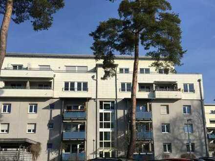 Wunderschöne 3 Zimmerwohnung mit großer Dachterrasse und Stellplatz