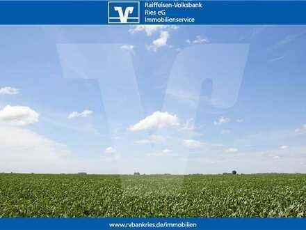 Landwirtschaftliche Fläche / Wiese in der Gemarkung Holheim