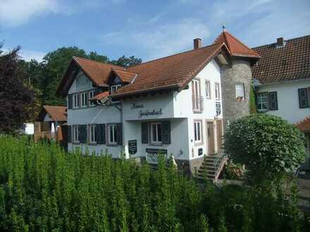 Geräumige Wohnung mit zwei Zimmern zur Miete in Münchwald