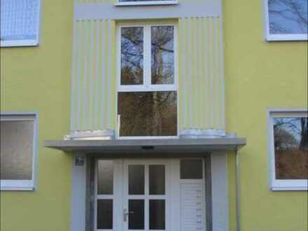 Renovierte 4 Zimmer Wohung ab 15.06. zur Vermietung
