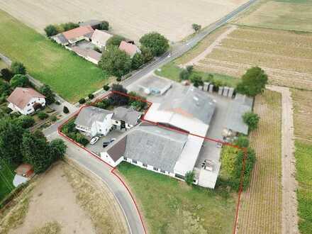 Großzügige Produktions- und Lagerhalle mit großer Freifläche und 2 separaten Wohneinheiten