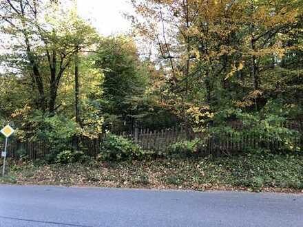 Gauting-Königswiesen - ein Baugrundstück im Grünen zum bezahlbaren Preis