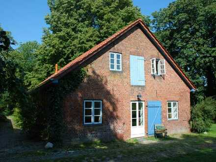 Ländliches kleines Wohnhaus in Sürwürderdeich