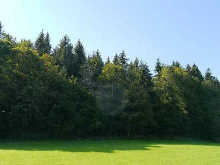 Waldparzellen in Roßwälden