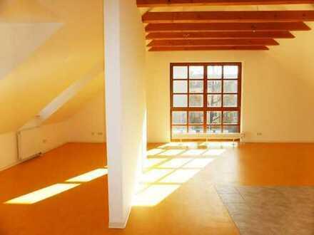 Großzügige Wohnung in Dresden-Cotta, ideal für eine große Wohngemeinschaft