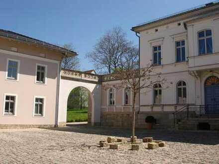 exlusive traumhafte sehr ruhige 2-Raum Wohnung mit Terrasse im Denkmal (Villa) !provisionsfrei!