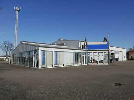 Industriehalle mit Büro und Freifläche