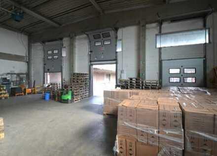 """""""BAUMÜLLER & CO."""" - direkt an der B459 - ca. 5.000 m² Hallenfläche"""