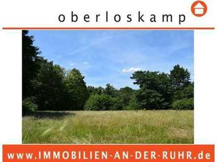 Rarität! Uhlenhorst par excellence! Entwicklungsgrundstück mit ca. 1 ha Grundstücksgröße