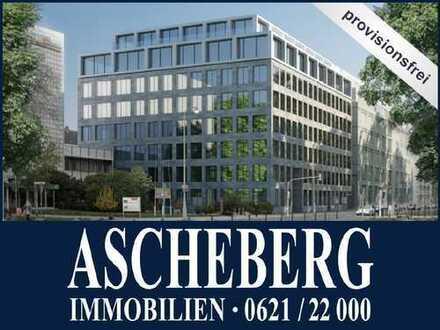 MA-AUGUSTAANLAGE: PROVISIONSFREI! Exklusive Bürofläche von ca. 500 m²!