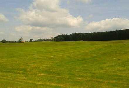 Marktoberdorf, Landwirtschaftliche, sehr schöne Grünflächen/Wiesen, im schönen Ostallgäu