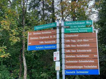 Wald am Grünstein?