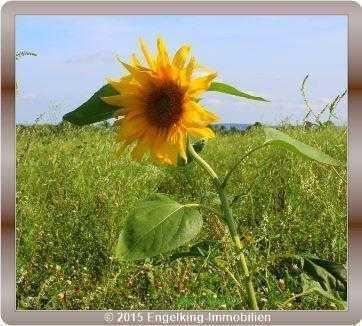 Naturfreunde aufgepasst: Großes, idyllisch gelegenes Grundstück in Hanglage