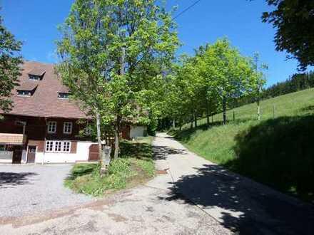 3 Zi. - Whg. in altem Bauernhaus in Furtwangen - Rohrbach