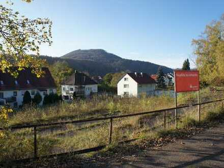 Nur 44,- Euro pro m² - Großer, sonniger Bauplatz in Albstadt-Truchtelfingen