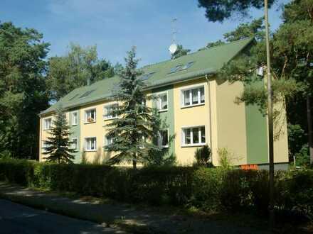 2-Zimmer-DG-Wohnung mit EBK in Bad Saarow - Strand