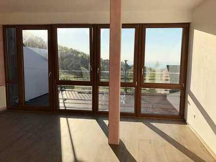 **3 Wohnungen** im Terrassenpark des schönen Luftkurorts Sasbachwalden